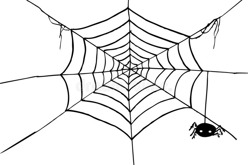 Schizzo, ragno e web di tiraggio della mano illustrazione vettoriale