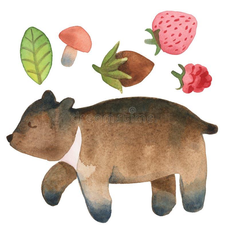 Schl?friger netter kleiner B?r mit dem Blatt, Haselnuss, Pilz und Beeren lokalisiert auf wei?em Hintergrund vektor abbildung