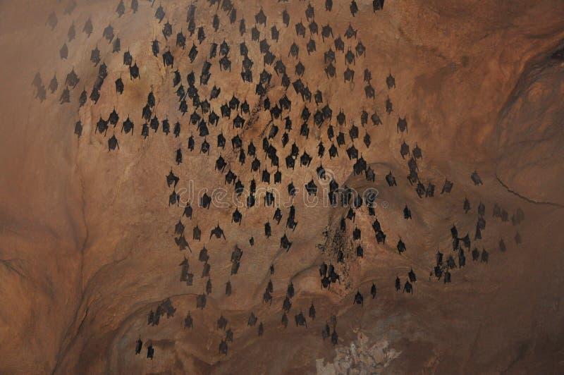 Schläger-Höhle lizenzfreie stockfotografie