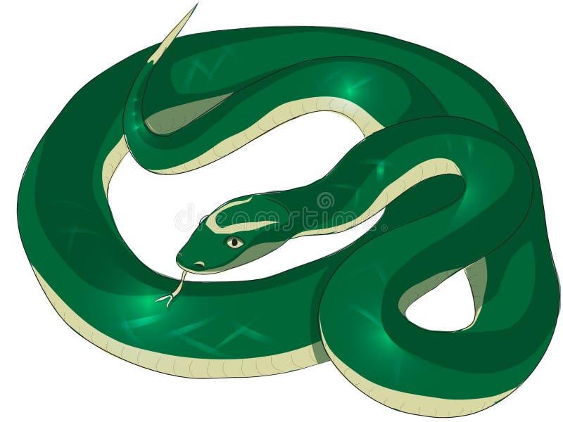 Schlängeln Sie sich mit grünem Hautvektorillustrations-Furchtbild stockbild