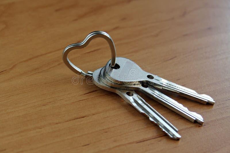 Schlüssel auf dem Ring lizenzfreie stockbilder