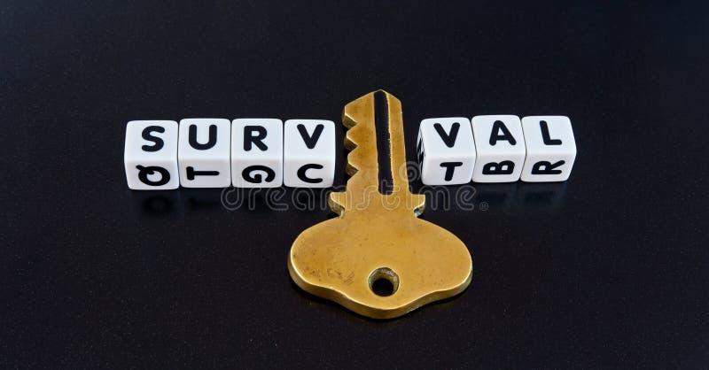 Schlüssel zum Überleben lizenzfreies stockfoto