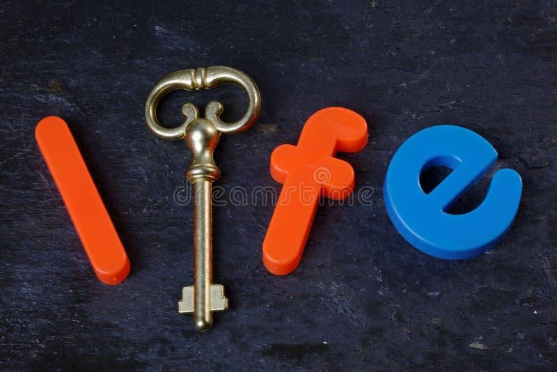Schlüssel zum Leben lizenzfreie stockfotografie