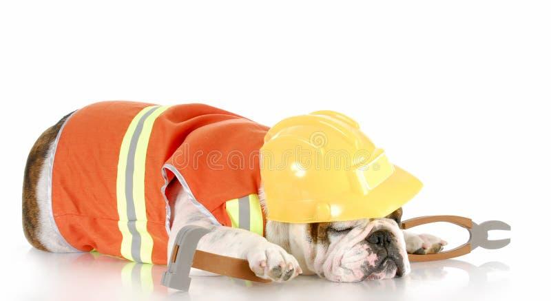 Schlafen auf dem Job stockfoto