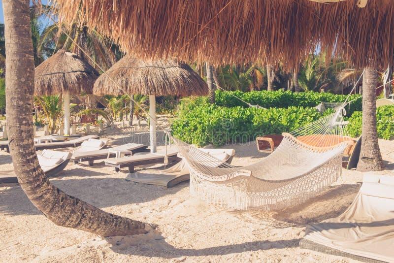 SchlafenNettohängen zwischen Palmen auf dem Strand stockbild