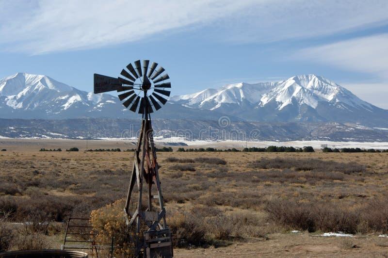 Schlag im Wind stockbilder