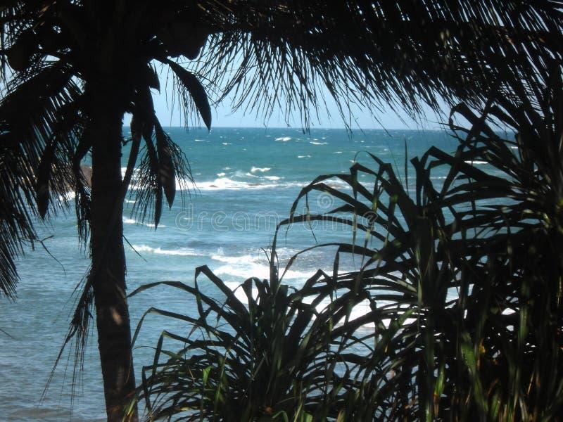 Schlag - Loch 03, Sri Lanka lizenzfreie stockfotos