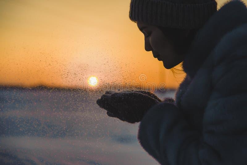 Schlagschneeflocken bei Sonnenuntergang lizenzfreie stockfotografie