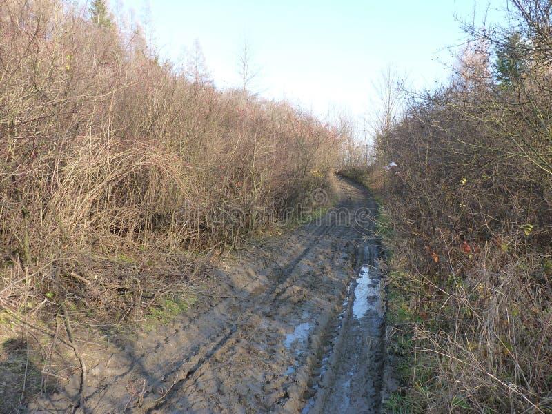 Schlamm und Pfützen auf dem Schotterweg lizenzfreies stockbild