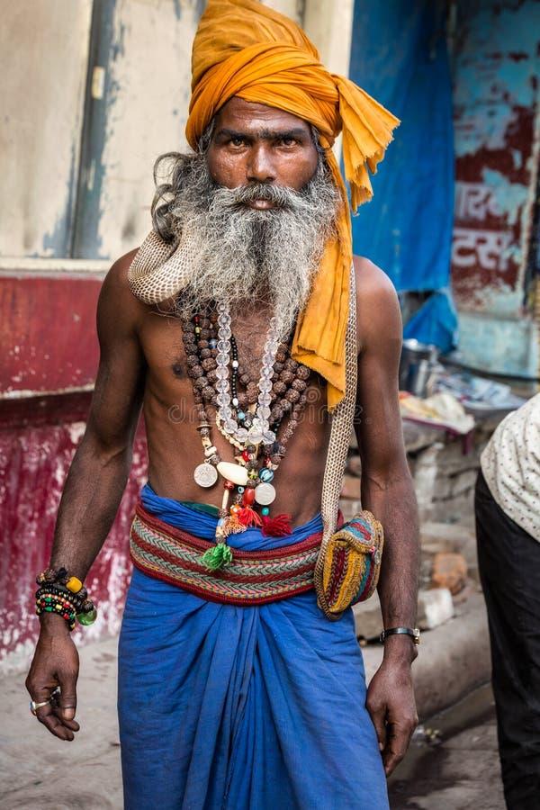 Schlange sadhu Indien stockbild