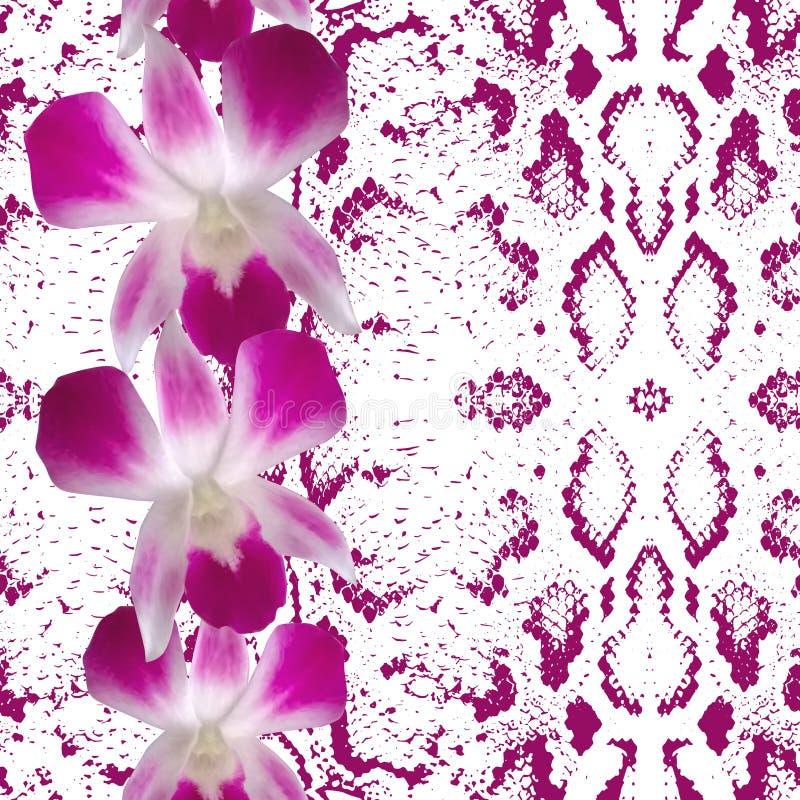 Schlangenhaut-Beschaffenheitsrosablumen, Orchidee stock abbildung