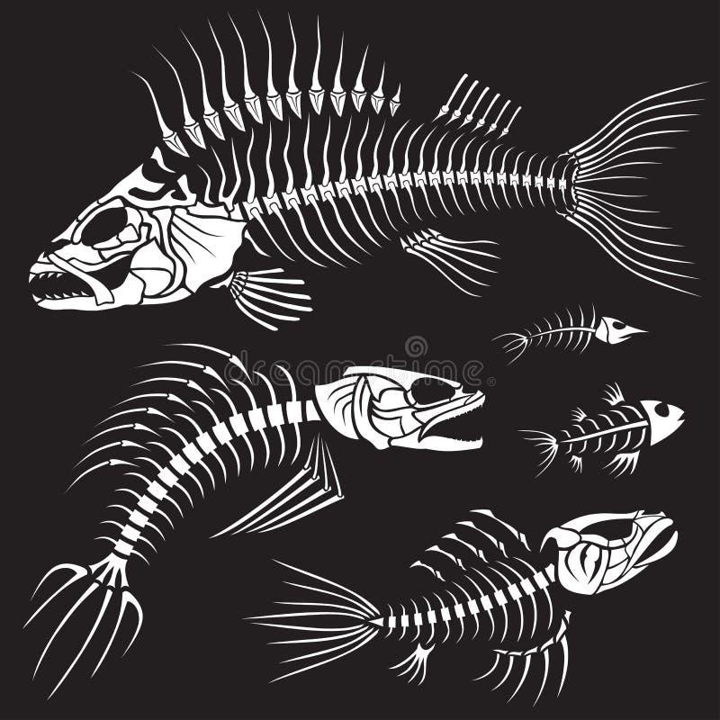Schlechte Fische Sceleton Ansammlung lizenzfreie abbildung