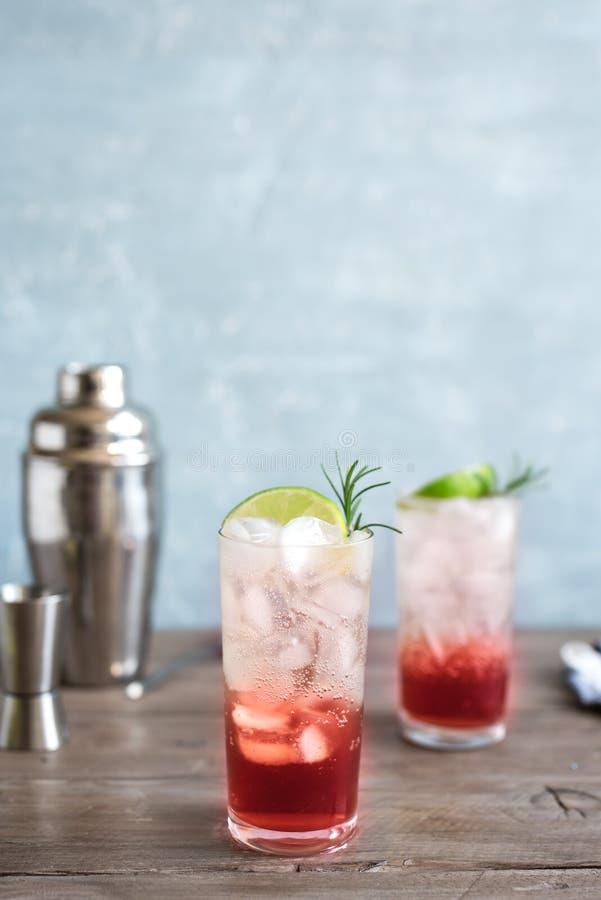 Schlehe Gin Fizz Cocktail stockfoto