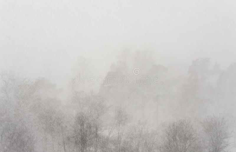 Schleier von schweren Schneefällen stockfoto