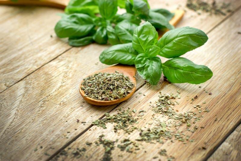 Schleifen, gemahlener trockener Basilikum und frischer organischer Basilikum lizenzfreies stockbild
