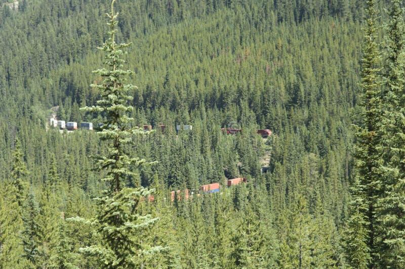 Schleifenzug, der gewundene Bahn im Britisch-Columbia, Kanada kurvt lizenzfreie stockfotografie