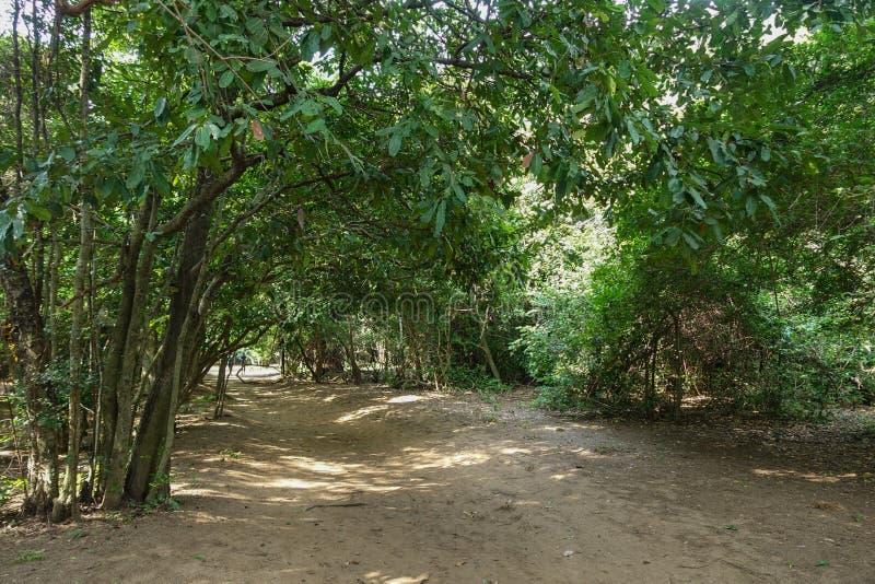 schleppen Sie an Leamsala-Weise zu Höhle nahe gelegenes Hua Hin, Tha Phraya Nakorn lizenzfreie stockfotos