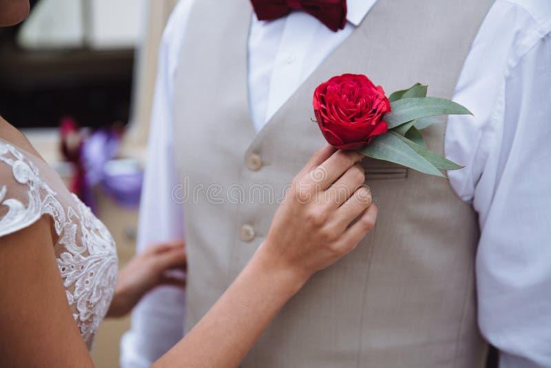 Schließen Sie herauf die Hände der Braut, die Boutonniere zu groom Jacke feststecken stockfotografie