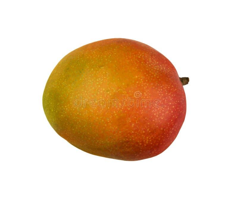 Schließen Sie herauf eine ganze gelbe Mango, die auf Weiß lokalisiert wird lizenzfreies stockfoto