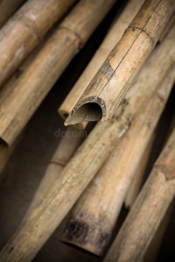 Schließen Sie herauf Hintergrund von trockenen starken Bambuspfosten stockfotografie