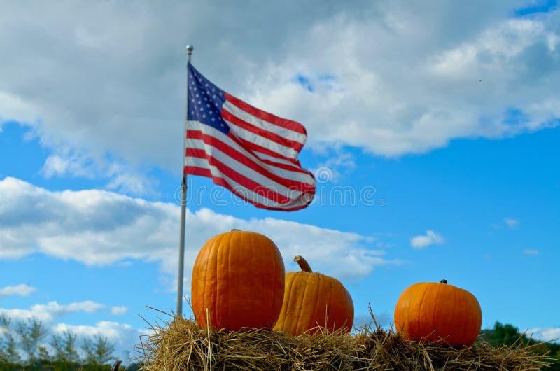 Schließen Sie herauf Kürbise mit amerikanischer Flagge stockbilder