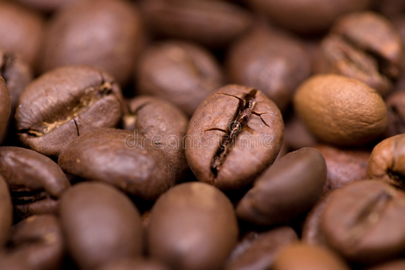 Schließen Sie herauf Makroschuß der Kaffeebohne stockfotografie
