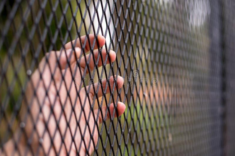 Schließen Sie herauf Mann ` s Hand, die ein Stahlnetzgehege fängt stockfoto