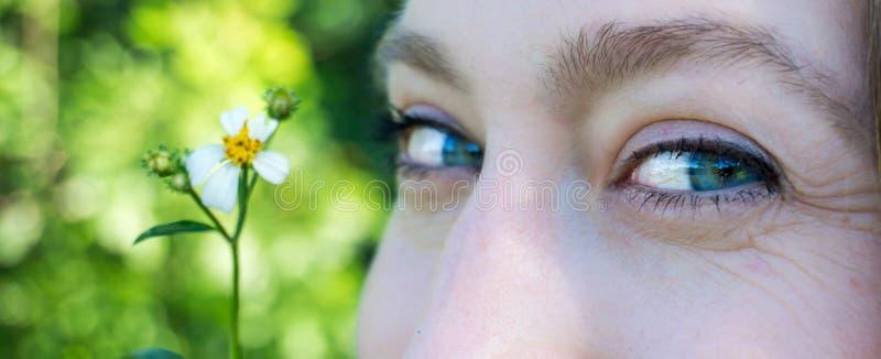 Schließen Sie herauf Porträt der blauen Augen eines jungen Blondinegesichtes, das mit einer Gänseblümchenblume lächelt lizenzfreie stockbilder