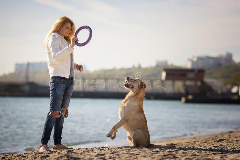 Schließen Sie herauf Porträt des schönen langhaarigen Mädchens, das ihren Labrador retriever-Hund auf dem Strand ausbildet stockfotos