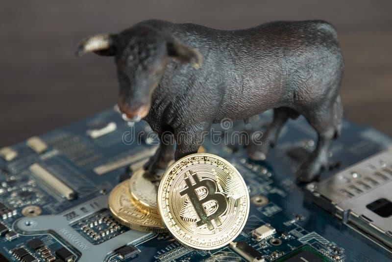 Schließen Sie herauf Stier mit Bitcoin Cryptocurrency auf Computer Motherboar stockfotografie