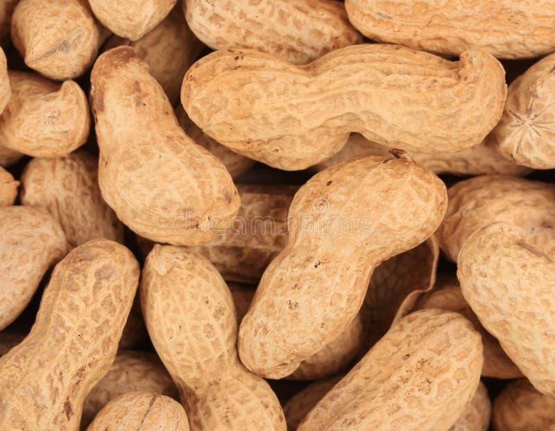 Schließen Sie oben vom Erdnussbündel. stockbild