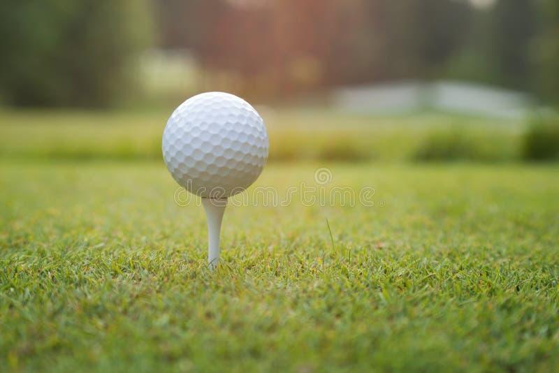 Schließen Sie oben vom Golfball auf T-Stück bei Sonnenuntergang stockbild