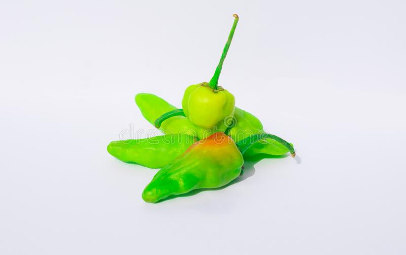 Schließen Sie oben vom grünen Paprika, der auf einem weißen Hintergrund lokalisiert wird lizenzfreie stockbilder