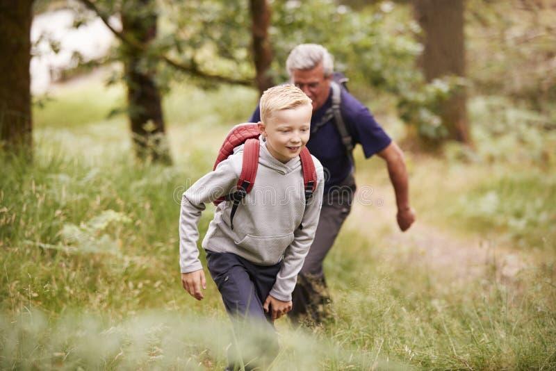 Schließen Sie oben vom jugendlichen Jungen, der mit seinem Großvater in einem Wald, selektiver Fokus wandert lizenzfreie stockfotos