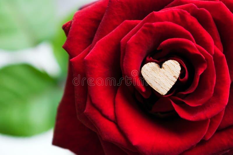 Schließen Sie oben vom kleinen hölzernen Herzen unter den Blumenblättern einer roten Rose M lizenzfreies stockbild