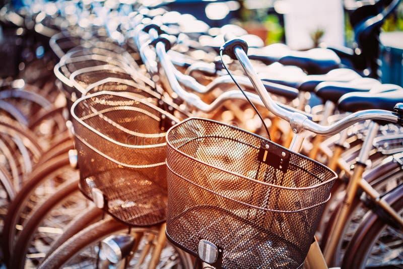 Schließen Sie oben vom Korb des Fahrrades auf Parken Sonnenlicht-Sonnenschein Thro lizenzfreie stockfotos