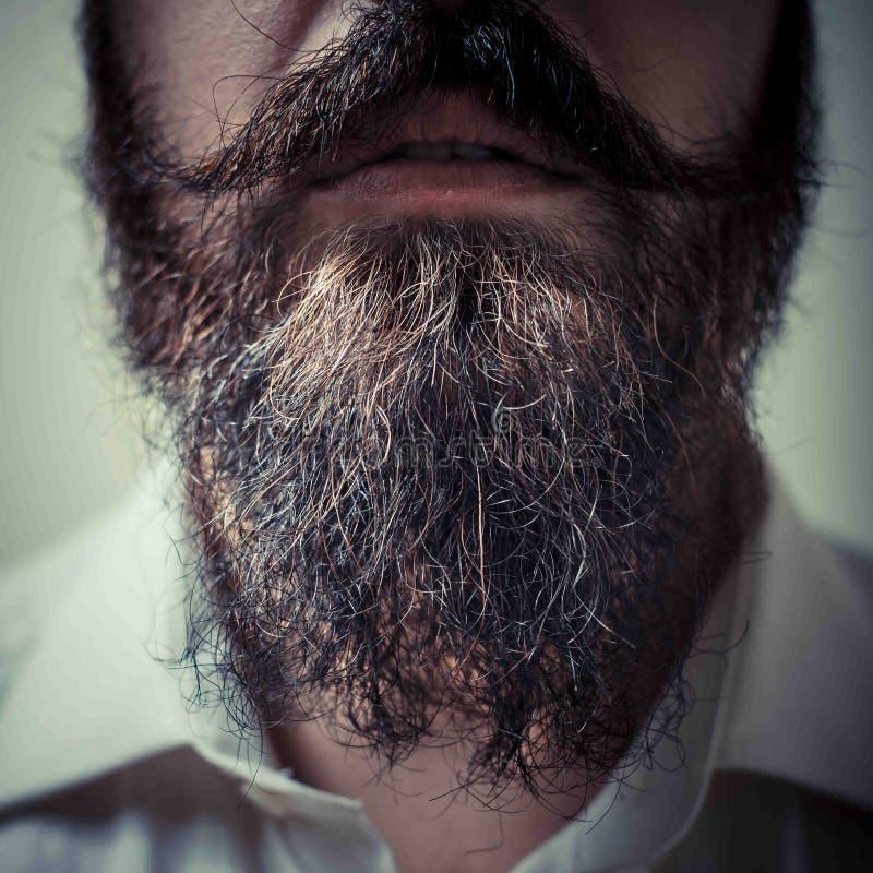 Schließen Sie oben vom langen Bart und vom Schnurrbart stockfoto
