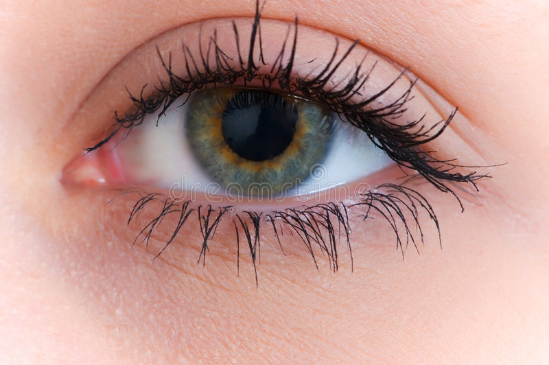 Schließen Sie oben vom menschlichen Auge lizenzfreies stockfoto