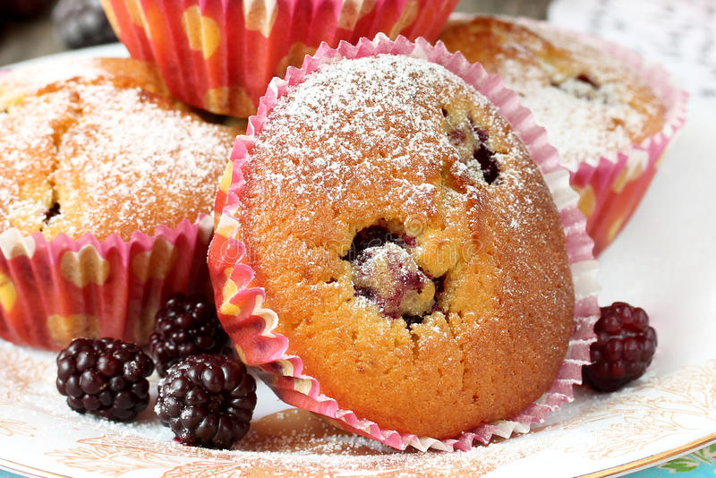 Schließen Sie oben vom Muffin mit Brombeere lizenzfreies stockfoto