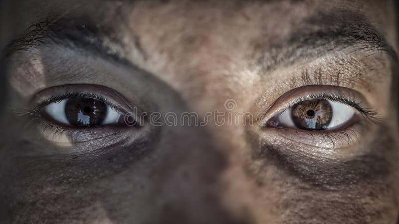 Schließen Sie oben von den Augen lizenzfreie stockfotografie