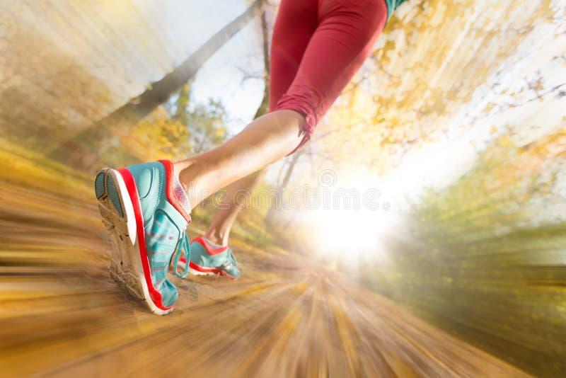Schließen Sie oben von den Füßen des weiblichen Läufers stockfotos