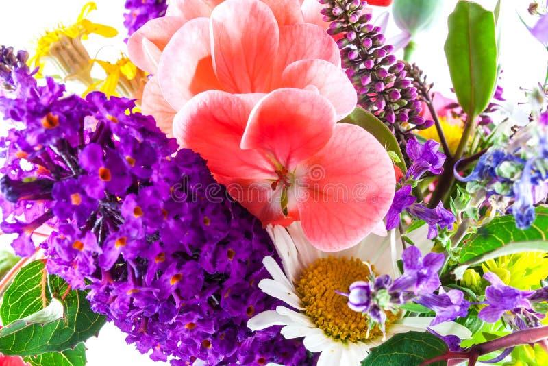 Schließen Sie oben von den Gartenblumen stockfoto