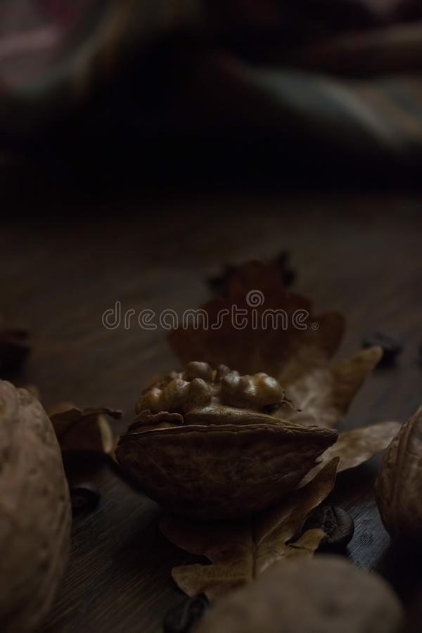 Schließen Sie oben von den herbstlichen Nüssen und von den Blättern stockfotos