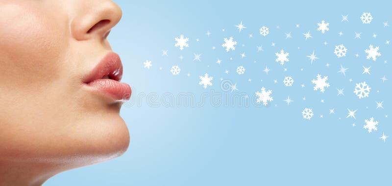 Schließen Sie oben von den Lippen der jungen Frau stockbild