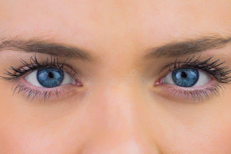 Schließen Sie oben von den weiblichen blauen Augen stockfotografie