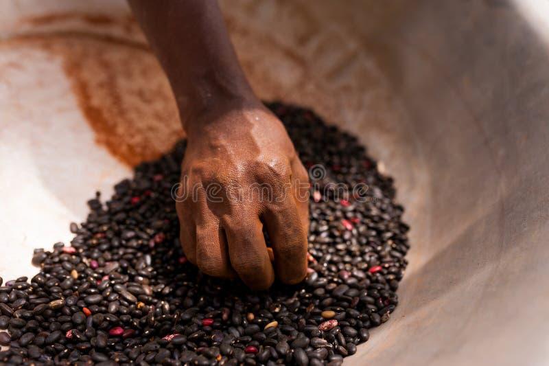 Schließen Sie oben von der dünnen Hand der alten afrikanischen Frau, die inneren Topf der schwarzen Bohnen im Freien hält stockfoto