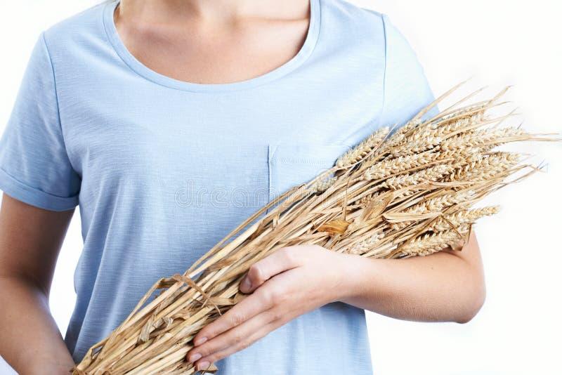 Schließen Sie oben von der Frau, die Bündel Weizen hält lizenzfreie stockfotos