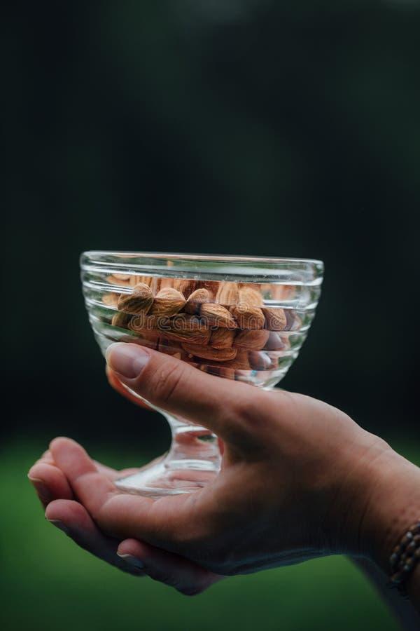 Schließen Sie oben von der Frau, die Glasschüssel mit Mandeln nuts hält lizenzfreie stockbilder