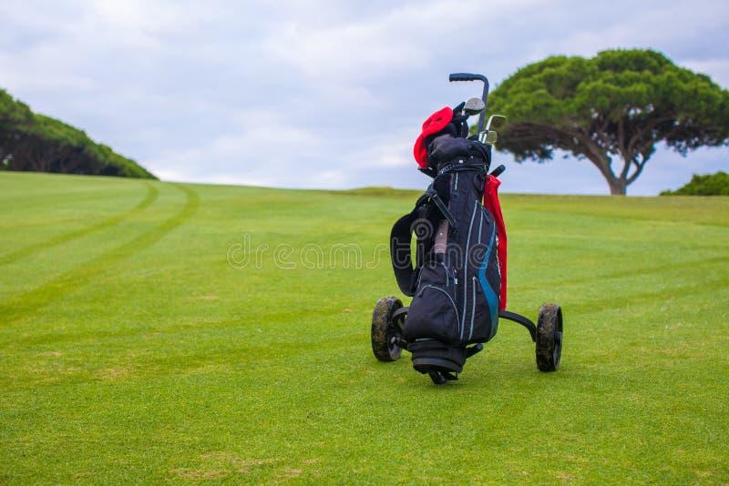 Schließen Sie oben von der Golftasche auf einem grünen perfekten Feld stockbilder