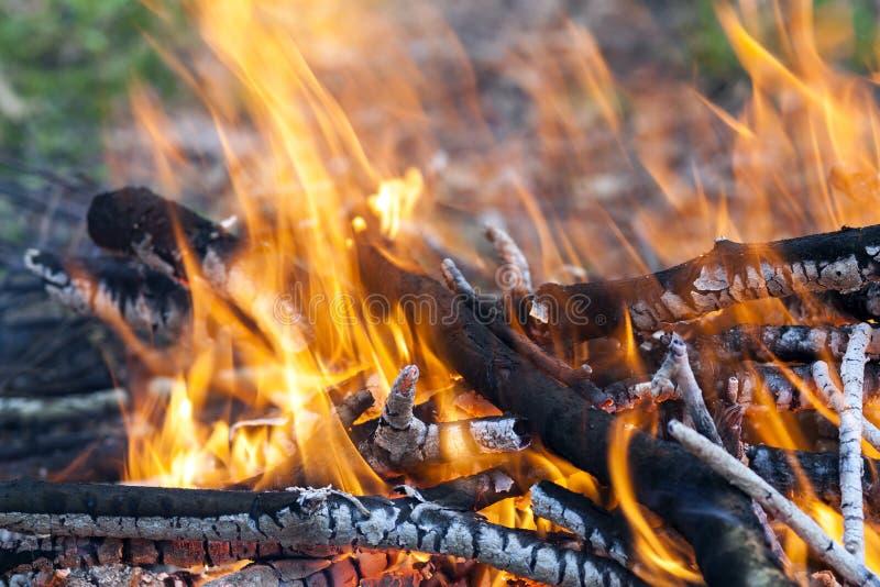 Schließen Sie oben von der hölzernen Kohle des heißen brennenden Feuers lizenzfreies stockfoto
